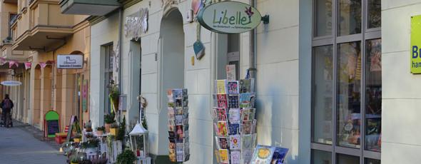 Kinderbuch Libelle